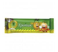 Батончик фруктовый Тропик с ананасом, 40 г
